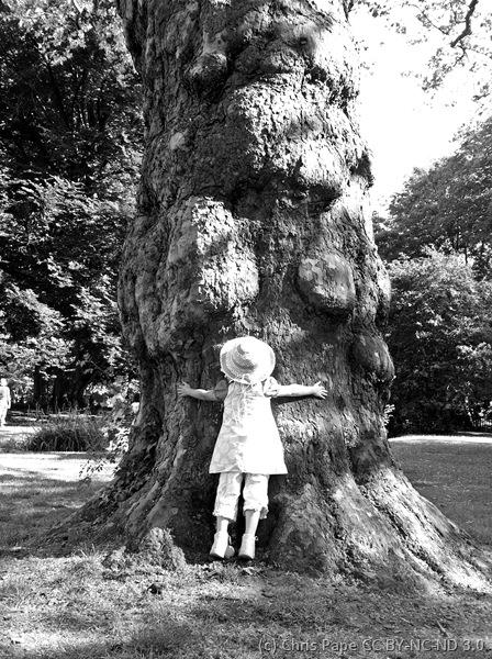 IMG_4359_hug_a_tree