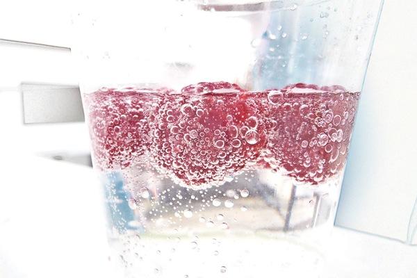 2012_09_02_15_36_P1140727_raspberry