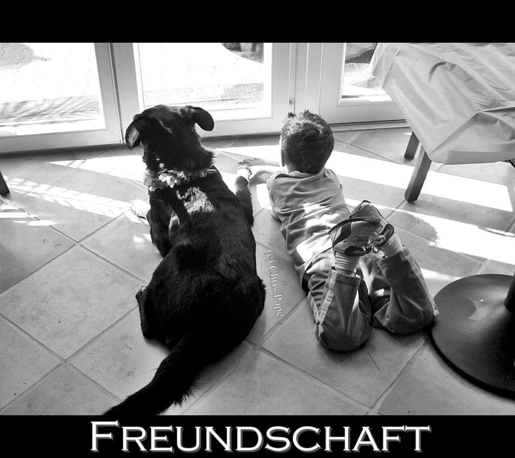 Freundschaft_RIMG0101-1024
