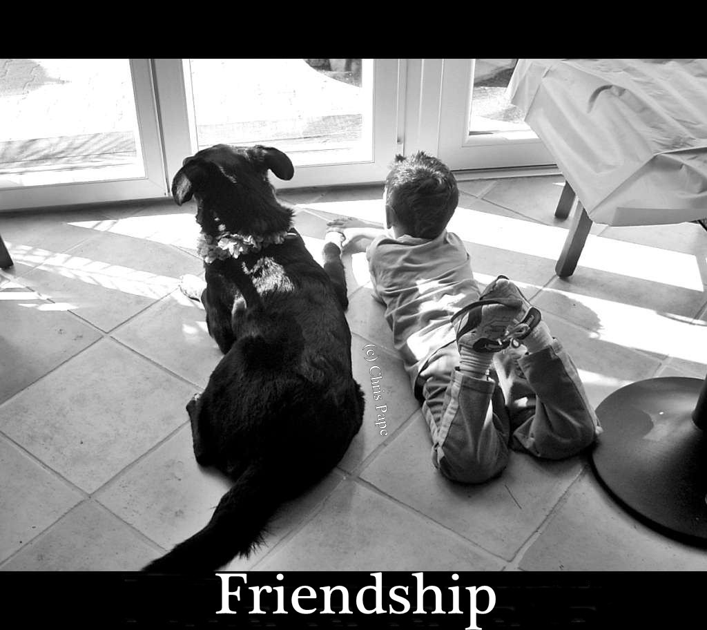 Friendship_RIMG0101-1024