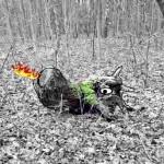 Feuerdrachen_pareidoliaproject-1024
